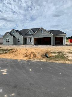 10 Glock Lane Lakeland Ga New construction